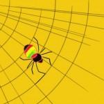 蜘蛛の夢占い★その意味が吉夢の時の6つの診断