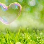 三碧木星の女性の性格から分かる6の恋愛傾向