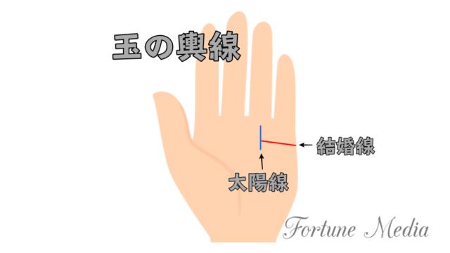 玉の輿線(結婚線が太陽線に届く)手相