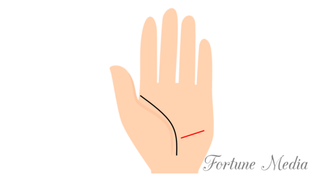 健康線が横向きに伸びている 手相