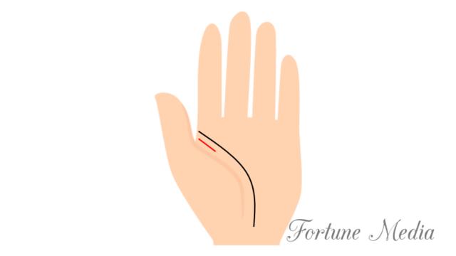 人差し指の下の幅の長さの二重生命線(火星線)手相