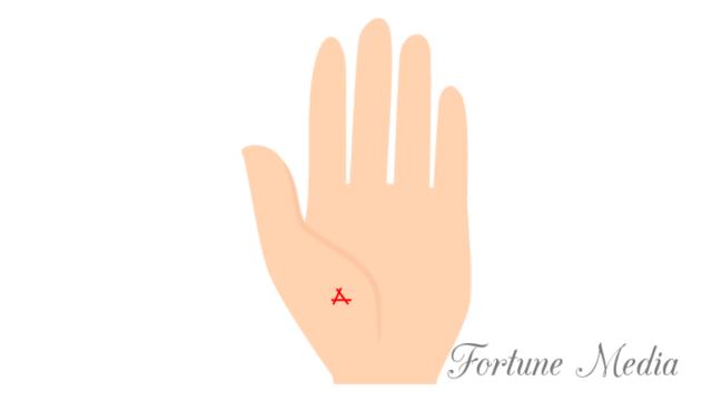 金星丘の三角紋(トライアングル)手相