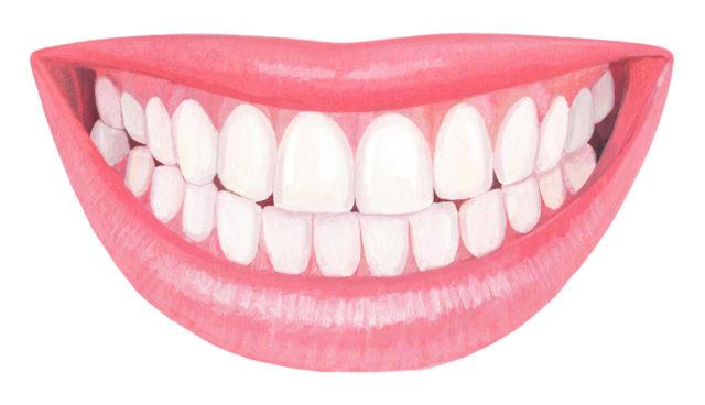 歯 歯並び