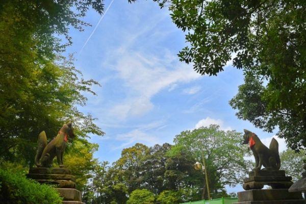 神社にあるもの⑤白狐像