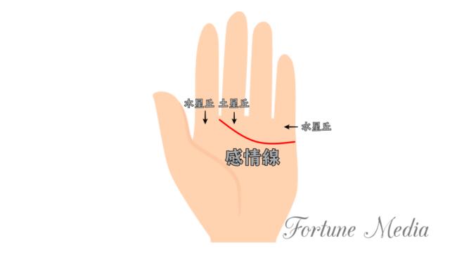 感情線が中指と人差し指の間まで伸びている手相