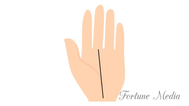 天下筋の相 運命線が手首から中指付け根まで伸びる手相