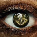 超危険な「獣眼」「蛇眼」「車輪眼」「四白眼」の性格を人相学で解説