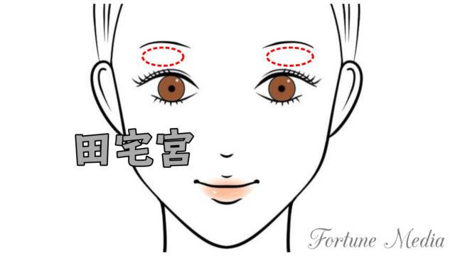 目と眉毛の間・田宅宮の位置