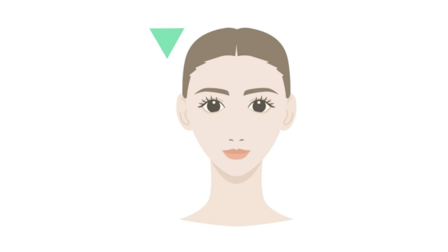 顔の形・頭の形 逆三角形 修正