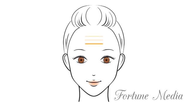 額のシワ・地紋がはっきり出ている