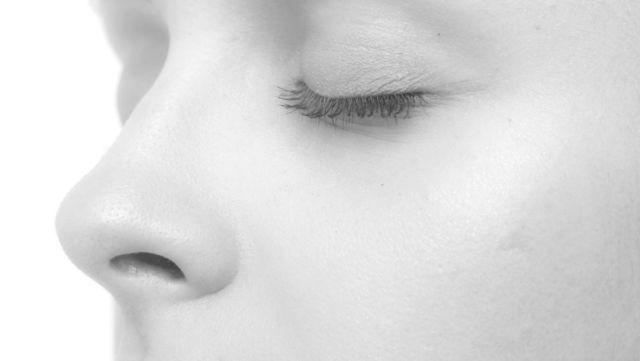ツヤのある女性の鼻
