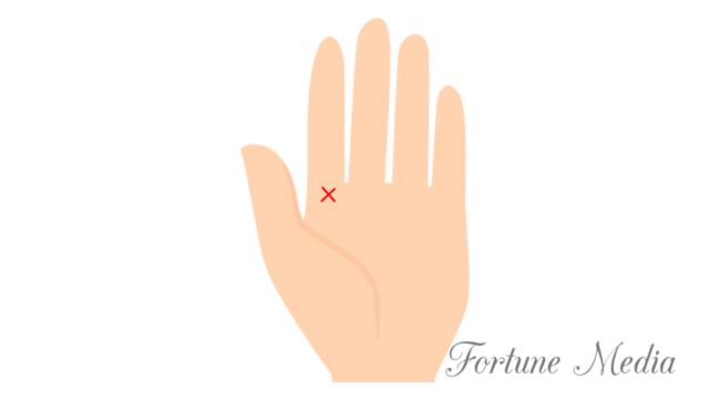 人差し指の真下にあるクロス(十字線) 木星丘 手相