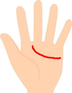 人差し指と中指の間に向かって伸びる感情線